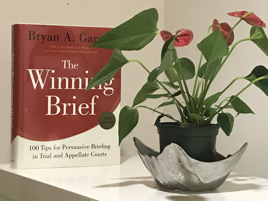 ildiko nyari The Winning Brief by Bryan A. Garner